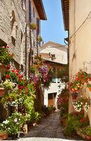 Beautiful street in Spello. Italy