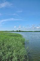 D--Insel Usedom--Peene bei Karlshagen.jpg