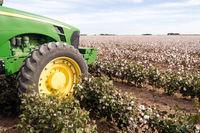 Cotton Farm Field Texas Plantation Tractor Agriculture Cash Crop