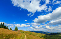 Summer mountain country view (Carpathian, Ukraine).