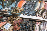 Shellfish, seafood and fish at a market in Santiago de Chile