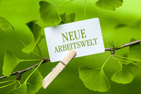 The Words Neue Arbeitswelt in a Ginkgo Tree