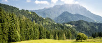 Mountain valley with green trees