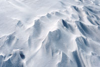 Strong winter winds create snowdrifts in the cold season.Natural light and shadows highlight the small hills and galleys of the icy snow.