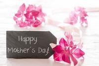 Hydrangea Blossom, Text Happy Mothers Day