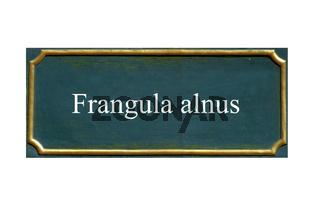 schild Faulbaum,Frangula alnus
