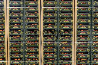 Stockroom Pallets Tomatoes