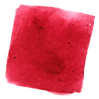 Red wry watercolor square