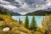The Banff National Park