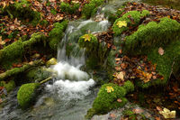water, waterfall, creek, swabian alb, germany,