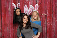 3 cute bunnies in front of a photo box