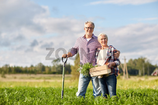 senior couple with shovel and carrots on farm