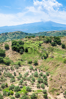 green mountain slope and Etna volcano