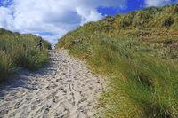 Zugang zum Strand am Ellenbogen, List, Sylt, nordfriesische Inse