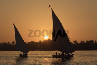 Egypt Luxor Faluka On The Nile At Sunset