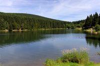 1 BA Oberer Grumbacher Teich.jpg