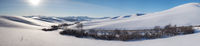 Panorama of winter road and trees under snow in Altai