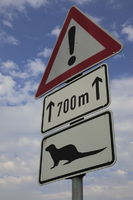 german traffic sign danger watch for otter on road