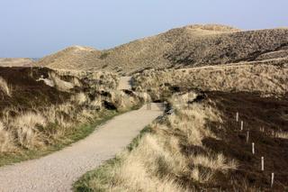 Weg durch Dünenlandschaft auf Sylt