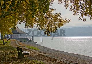 Insel Reichenau  am Bodensee