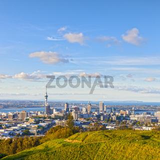 Auckland from Mount Eden