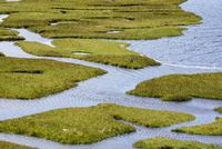 Marshland, Isle of Harris