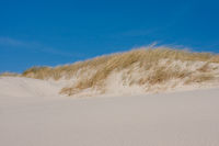 White dune landscape