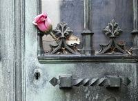 Pere Lachaise Rose am Grab