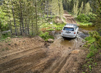 Toyota 4Runner SUV on a trail