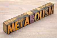 metabolism word in vintage wood type