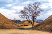 royal mounds with autumn foliage
