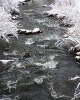 River flowing through a winter landscape