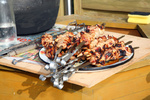 Roasted shish kebab.