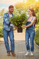 Cheerful gardeners carrying potted plant