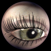 Digital 3D Illustration of a female Eye