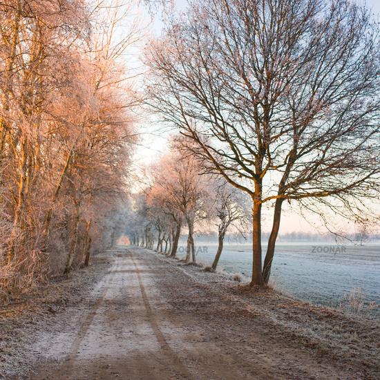 East Frisia