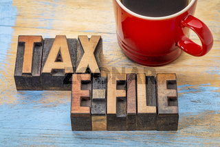 tax e-file word abstract