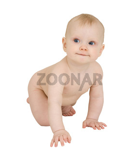 Infant crawl on a white background