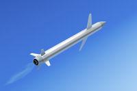 Flying cruise missile