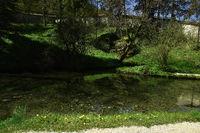 swabian alb; germany; spring; river Lauter;