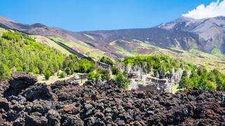 view of hardened lava flow on slope of Etna mount