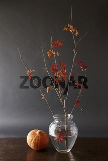 Herbstzweig und Kürbis
