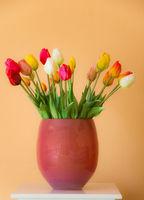 Tulip flower bouquet in a vase