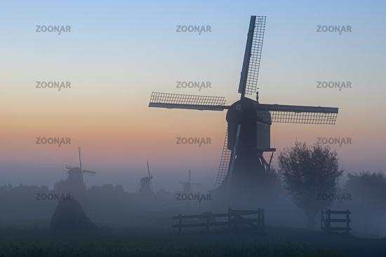 Historic windmills with fog, UNESCO World Heritage Site, Kinderdijk, South Holland, Netherlands, Eur