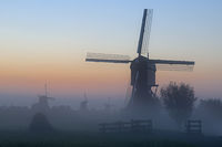 Historic windmills with fog, UNESCO World Heritage Site, Kinderdijk, South Holland, Netherlands, Eur