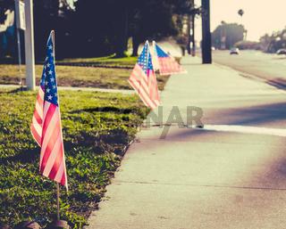 USA Flag On Lawn