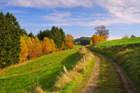 Elbsandsteingebirge Wanderweg - hiking track in Elbe Sandstone Mountains, Saxony