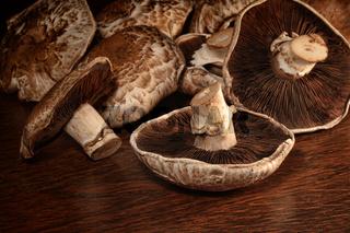 Closeup of fresh portobello mushrooms