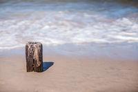 Single old wooden breakwater pole