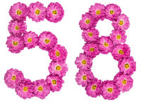 Arabic numeral 58, fifty eight, from flowers of chrysanthemum, isolated on white background